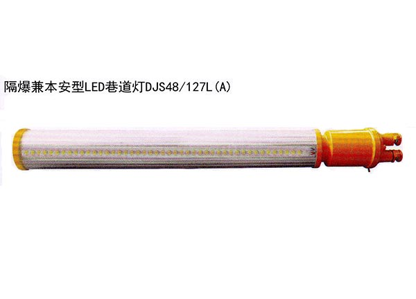 Explosion - proof and benan LED roadway light A1615